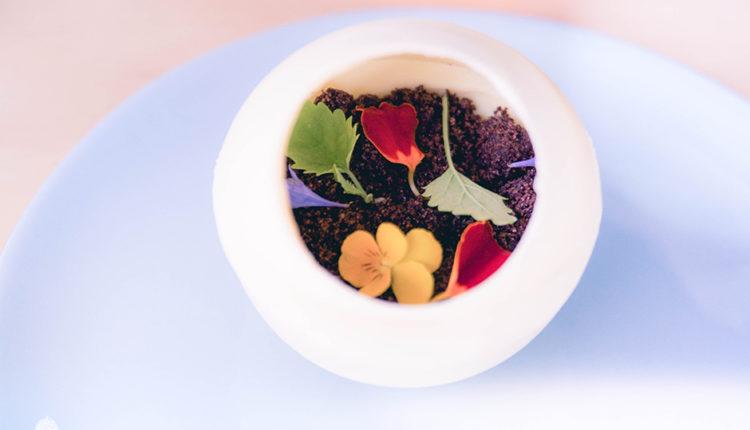 Petal Met sugar – Terrarium